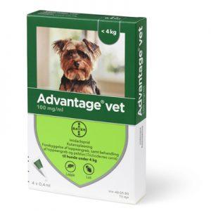 Advantage loppemiddel til små hunde (0-4kg)-æske med 4 behandlinger