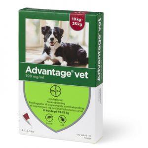 Advantage loppemiddel Hund (10-25)-pakke med 4 behandlinger, til mellemstore hunde