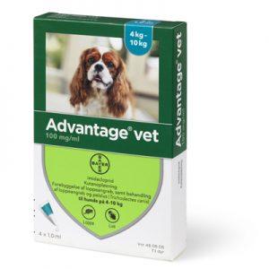 Advantage loppemiddel Hund (4-10kg)-til mindre hunde - æske med 4 behandlinger