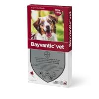 Bayvantic Lopper/Flåter/Lus Vet Hund (10-25 kg)-æske med 4 behandlinger