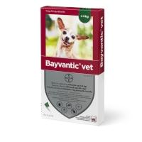 Bayvantic Lopper/Flåter/Lus Vet Hund (4-10 kg)-æske med 4 behandlinger til mindre hunde