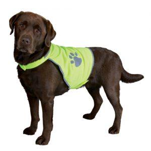 Neongul Sikkerhedsvest til hunde -