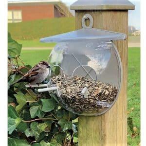 Fugl på fuglefoderhus model fuglecool